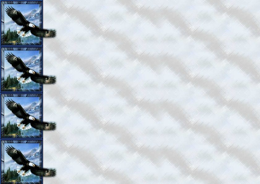 Aigle Oiseau Incredimail &amp&#x3B; Papier A4 h l &amp&#x3B; outlook &amp&#x3B; enveloppe &amp&#x3B; 2 cartes A5 &amp&#x3B; signets 3 langues   ois_anthem2