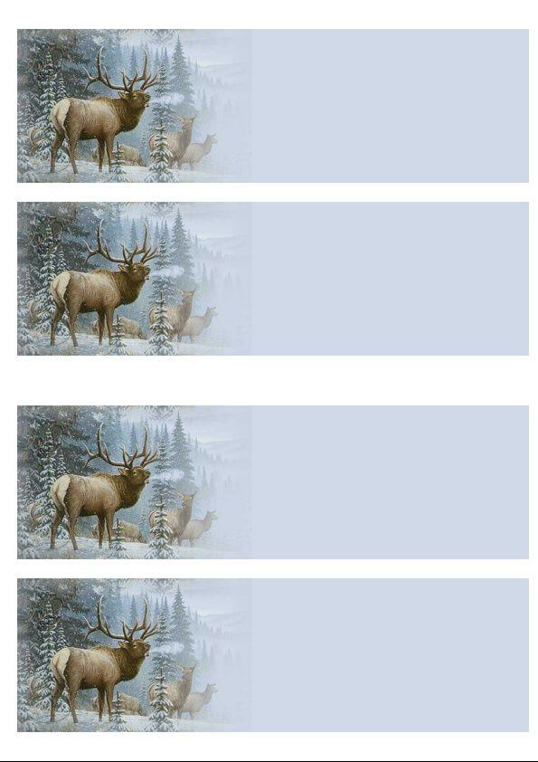 Cerf dans la neige Incredimail &amp&#x3B; Papier A4 h l &amp&#x3B; outlook &amp&#x3B; enveloppe &amp&#x3B; 2 cartes A5 &amp&#x3B; signets 3 langues  cold_morning