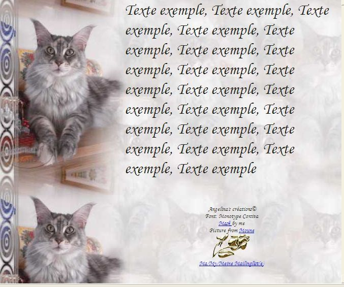 Maine Coon Incredimail &amp&#x3B; Papier A4 h l &amp&#x3B; outlook &amp&#x3B; enveloppe &amp&#x3B; 2 cartes A5 &amp&#x3B; signets 3 langues    chat_mainecoon_moune_cimg2339_00