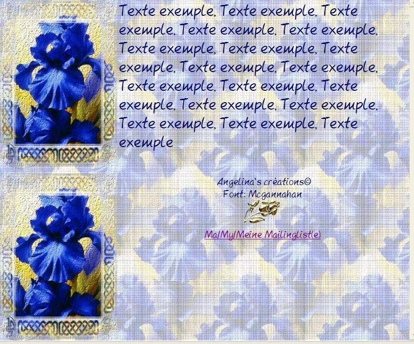 Iris Incredimail &amp&#x3B; Papier A4 h l &amp&#x3B; outlook &amp&#x3B; enveloppe &amp&#x3B; 2 cartes A5 &amp&#x3B; signets 3 langues    iris_fullsize24