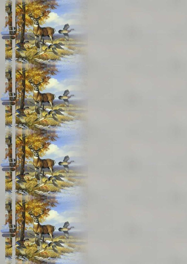 Cerf avec canards Incredimail &amp&#x3B; Papier A4 h l &amp&#x3B; outlook &amp&#x3B; enveloppe &amp&#x3B; 2 cartes A5 &amp&#x3B; signets 3 langues     an_buck_and_quail_snow_long