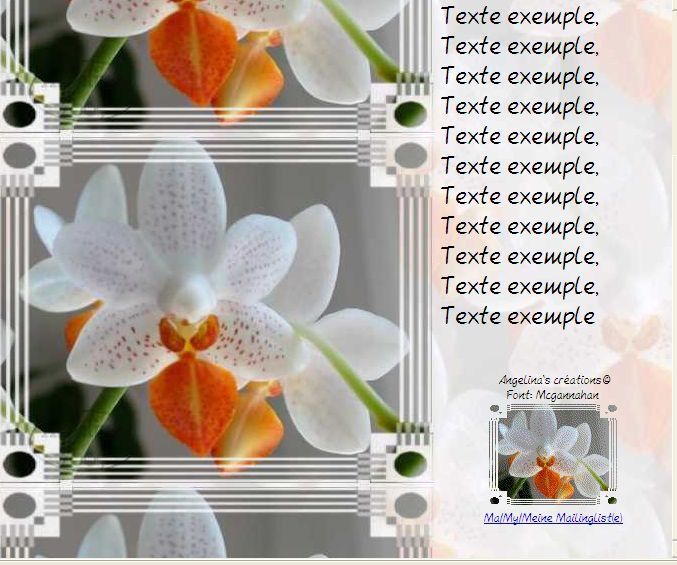 Phalaenopsis Incredimail &amp&#x3B; Papier A4 h l &amp&#x3B; outlook &amp&#x3B; enveloppe &amp&#x3B; 2 cartes A5 &amp&#x3B; signets 3 langues     436e530daeace