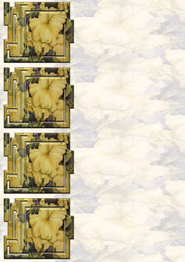 Petunia jaune Incredimail &amp&#x3B; Papier A4 h l &amp&#x3B; outlook &amp&#x3B; enveloppe &amp&#x3B; 2 cartes A5 &amp&#x3B; signets 3 langues    ceceturner_petuniaparadise