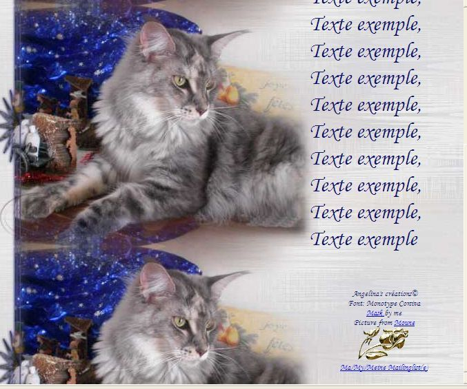 Maine Coon Incredimail &amp&#x3B; Papier A4 h l &amp&#x3B; outlook &amp&#x3B; enveloppe &amp&#x3B; 2 cartes A5 &amp&#x3B; signets 3 langues      chat_mainecoon_moune_cimg2337_00