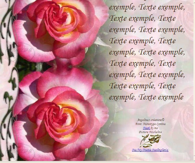 Rose chinée Incredimail &amp&#x3B; Papier A4 h l &amp&#x3B; outlook &amp&#x3B; enveloppe &amp&#x3B; 2 cartes A5 &amp&#x3B; signets 3 langues   rose_chinee_1_00_micheline