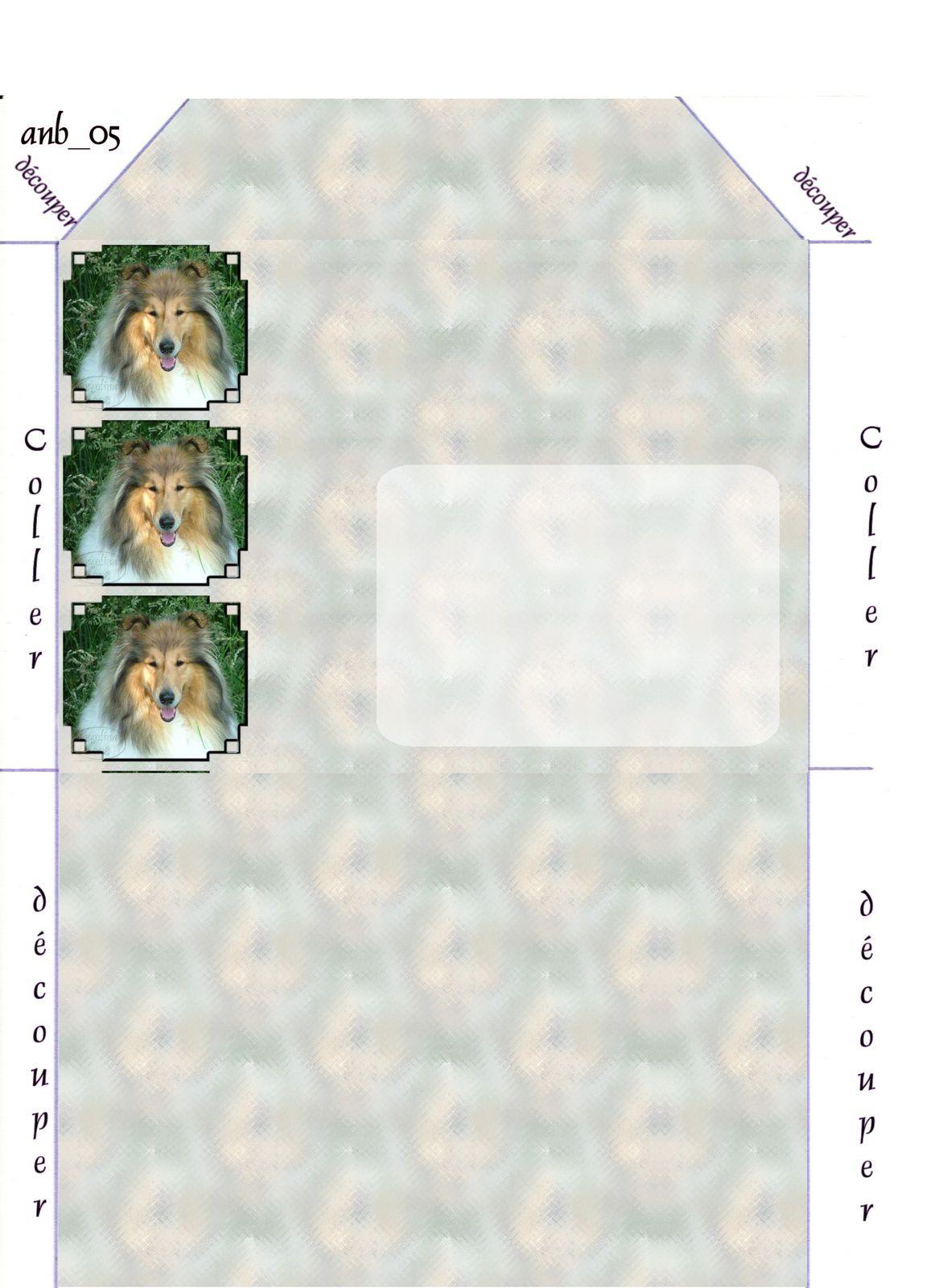 Colley Incredimail &amp&#x3B; Papier A4 h l &amp&#x3B; outlook &amp&#x3B; enveloppe &amp&#x3B; 2 cartes A5 &amp&#x3B; signets 3 langues    chien_dscf17351a