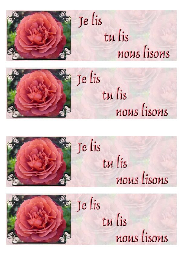 Rose chocolatée Incredimail &amp&#x3B; Papier A4 h l &amp&#x3B; outlook &amp&#x3B; enveloppe &amp&#x3B; 2 cartes A5 &amp&#x3B; signets 3 langues   rose_chocolatee_1_10_micheline