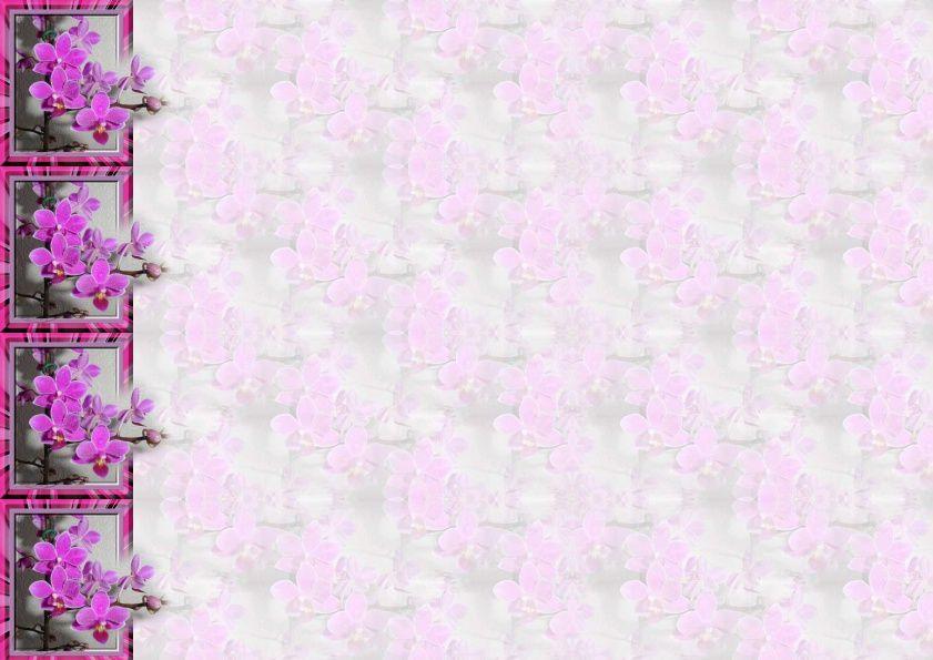 Orchidee sortant du cadre Incredimail &amp&#x3B; Papier A4 h l &amp&#x3B; outlook &amp&#x3B; enveloppe &amp&#x3B; 2 cartes A5 &amp&#x3B; signets 3 langues     4176d45bd3d11_sdc