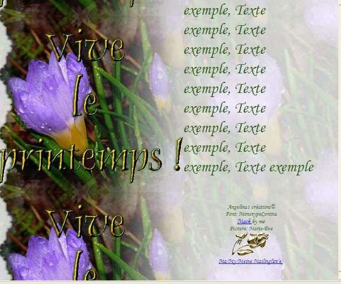 Vive le printemps Crocus Incredimail &amp&#x3B; Papier A4 h l &amp&#x3B; outlook &amp&#x3B; enveloppe &amp&#x3B; 2 cartes A5 &amp&#x3B; signets      vive_le_printemps_krokus_firefly_a56_00