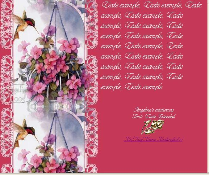 Fleurs suspendues avec colibri Incredimail &amp&#x3B; A4 h l &amp&#x3B; outlook &amp&#x3B; enveloppe &amp&#x3B; 2 cartes A5 &amp&#x3B; signets 3 langues     carolynshoreswright_shelter_wings_52