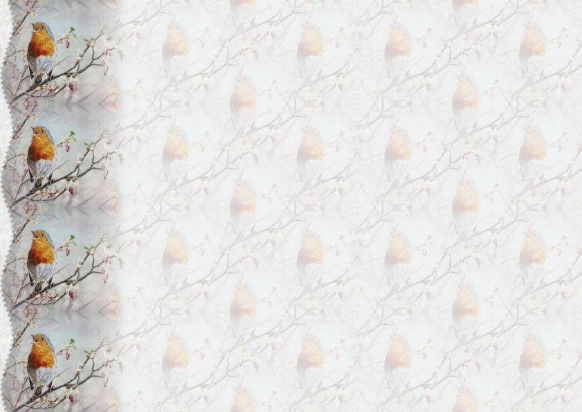 Oiseau Incredimail &amp&#x3B; Papier A4 h l &amp&#x3B; outlook &amp&#x3B; enveloppe &amp&#x3B; 2 cartes A5 &amp&#x3B; signets 3 langues    ois_b4f41fd8_hugo_00