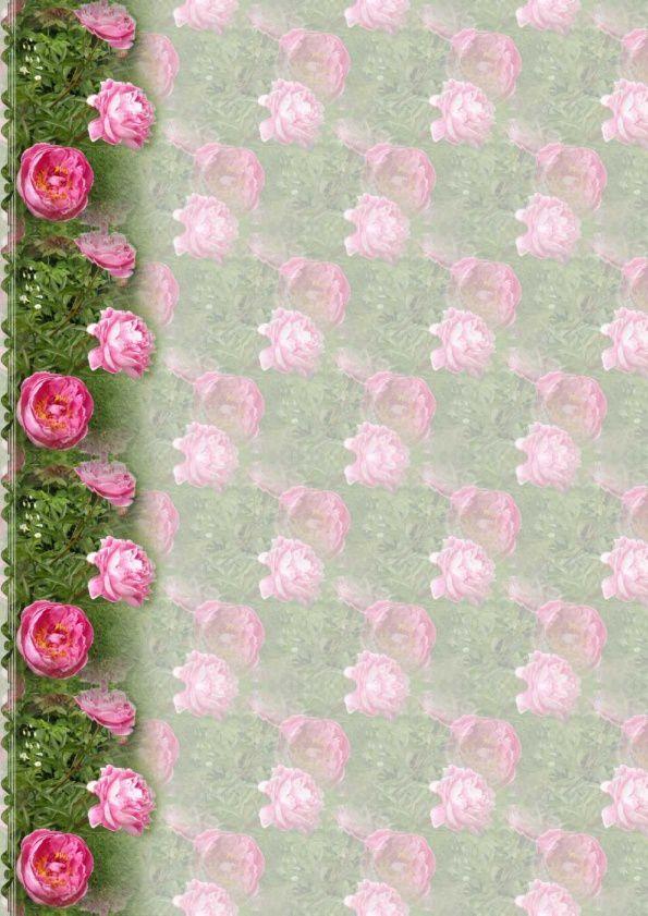 Fleurs Incredimail &amp&#x3B; Papier A4 h l &amp&#x3B; outlook &amp&#x3B; enveloppe &amp&#x3B; 2 cartes A5 &amp&#x3B; signets 3 langues       fleurs_gulipa_dscn1865_00