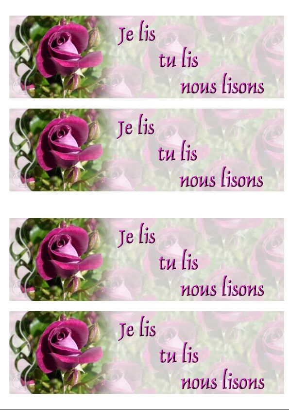 Rose violette Incredimail &amp&#x3B; Papier A4 h l &amp&#x3B; outlook &amp&#x3B; enveloppe &amp&#x3B; 2 cartes A5 &amp&#x3B; signets 3 langues     rose_violette_00_micheline
