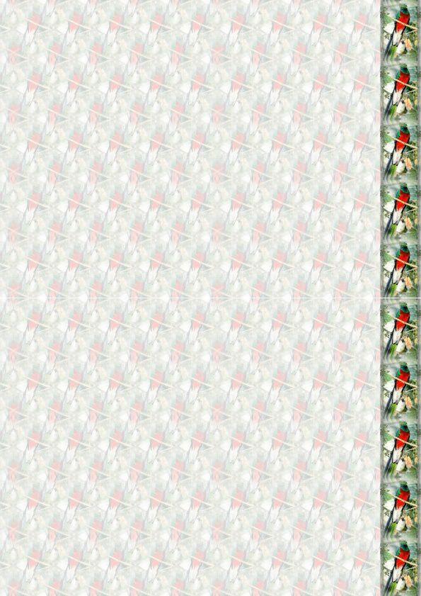 Quetzal Incredimail &amp&#x3B; Papier A4 h l &amp&#x3B; outlook &amp&#x3B; enveloppe &amp&#x3B; 2 cartes A5 &amp&#x3B; signets 3 langues     ois_quetzal5_00_micheline