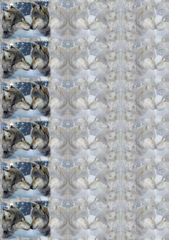 Loups Incredimail &amp&#x3B; Papier A4 h l &amp&#x3B; outlook &amp&#x3B; enveloppe &amp&#x3B; 2 cartes A5 &amp&#x3B; signets 3 langues     1117wolves