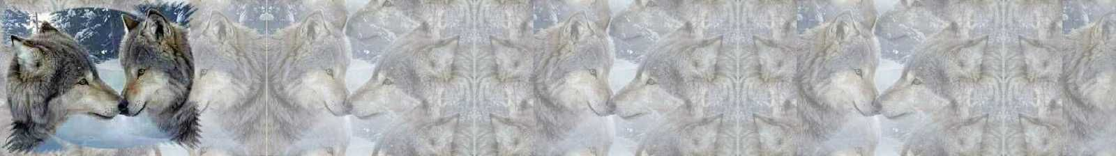 Loups Incredimail &amp&#x3B; Papier A4 h l &amp&#x3B; outlook &amp&#x3B; enveloppe &amp&#x3B; 2 cartes A5 &amp&#x3B; signets 3 langues     1117wolves