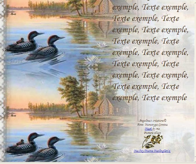 Canards paysage Incredimail &amp&#x3B; Papier A4 h l &amp&#x3B; outlook &amp&#x3B; enveloppe &amp&#x3B; 2 cartes A5 &amp&#x3B; signets 3 langues     canards_paysage_b3c6207a_hugo