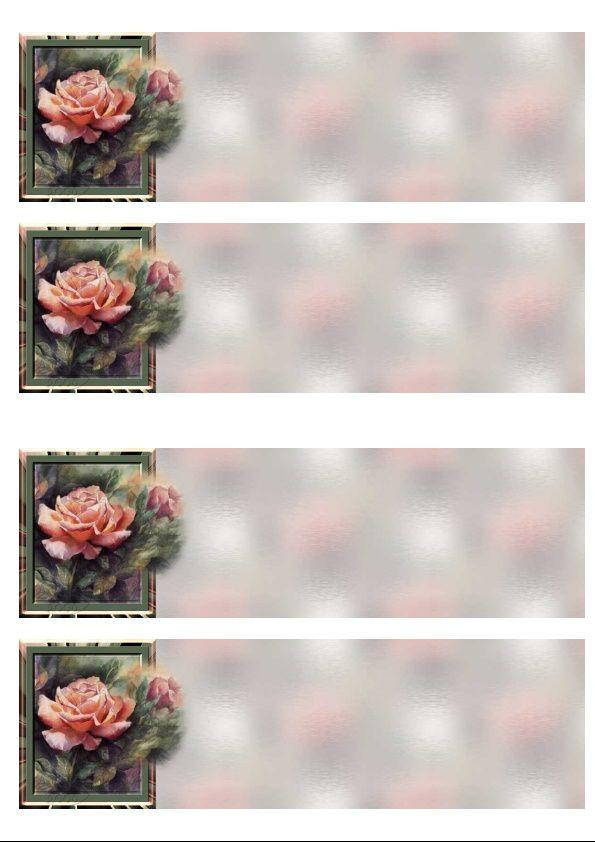Roses Incredimail &amp&#x3B; Papier A4 h l &amp&#x3B; outlook &amp&#x3B; enveloppe &amp&#x3B; 2 cartes A5 &amp&#x3B; signets 3 langues    tanisbula1_sdc