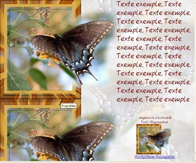 Papillon sdc Incredimail &amp&#x3B; Papier A4 h l &amp&#x3B; outlook &amp&#x3B; enveloppe &amp&#x3B; 2 cartes A5 &amp&#x3B; signets 3 langues   butterfly_swallowtail_sortant_du_cadre