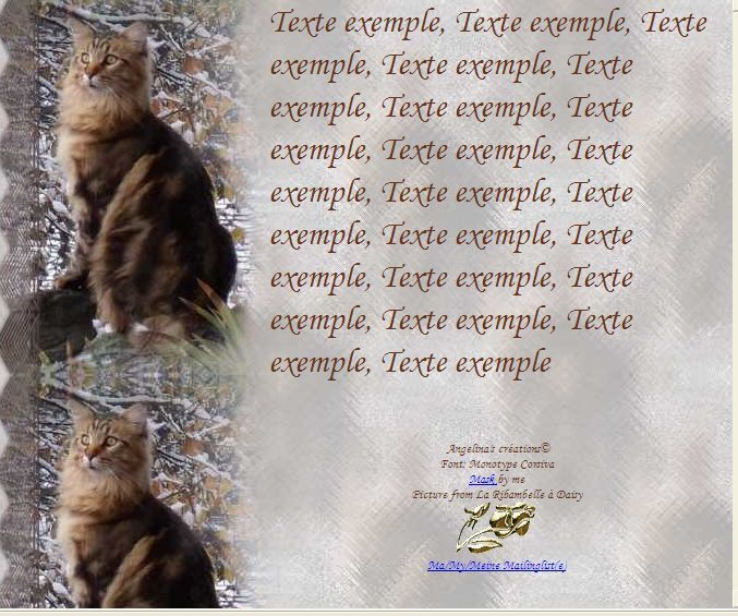 Mainecoon Incredimail &amp&#x3B; Papier A4 h l &amp&#x3B; outlook &amp&#x3B; enveloppe &amp&#x3B; 2 cartes A5 &amp&#x3B; signets 3 langues chat_maincoon_gedc0675_00