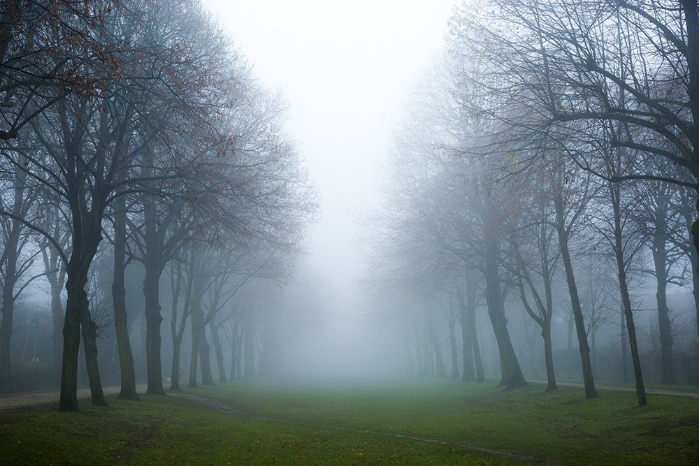 Raphaël Rippe : Montgeron sous le brouillard