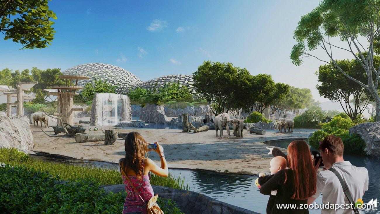 Les projets du zoo de Budapest