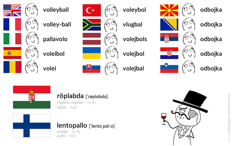Dans la série &quot&#x3B;le hongrois est une langue magnifique mais...&quot&#x3B; : le volley-ball