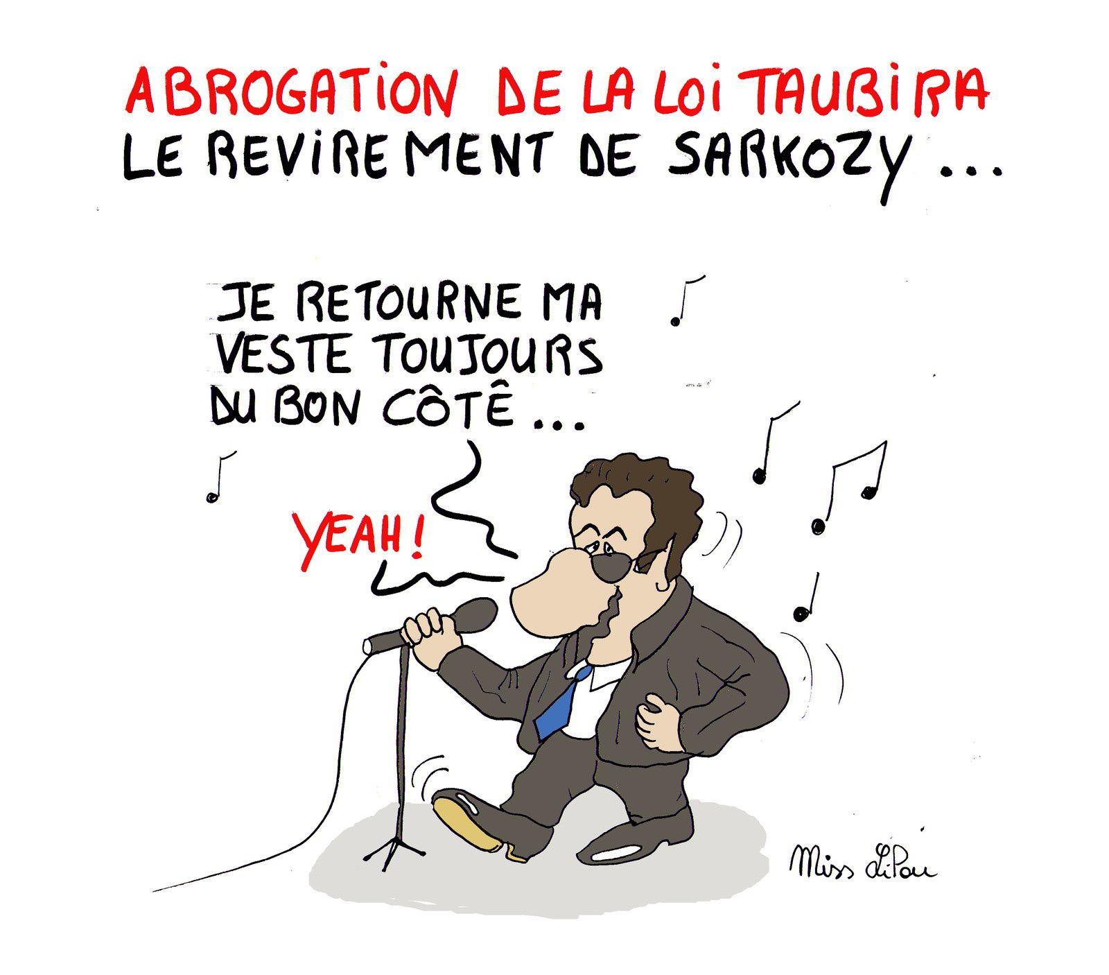 ABROGATION DE LA LOI TAUBIRA : LE REVIREMENT DE SARKOZY...