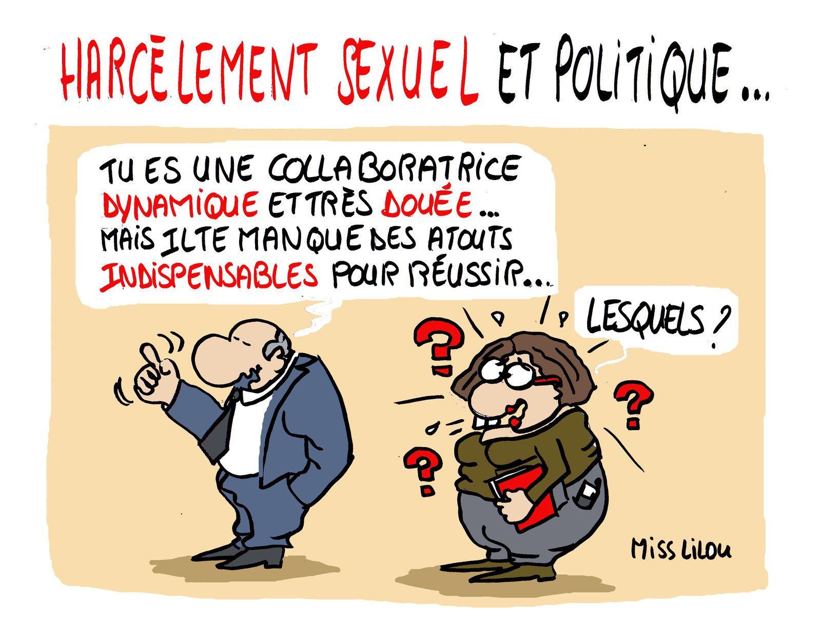 Harcèlement sexuel et Politique...