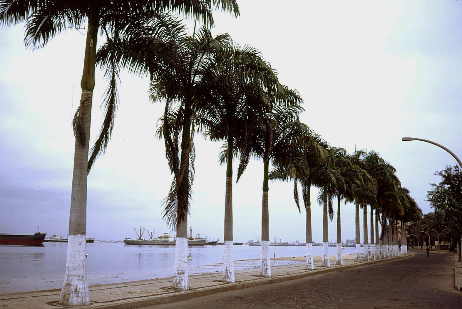 Lobito : à nouveau un magnifique port naturel. Après quelques photos nous nous dirigeons vers Benguela à travers des salines où flânent quelques flamants roses.             Une fois installés au camping  de Benguela, un petit vent frisquet nous fait vite dîner et rentrer sous la tente. Ici on parle à peine des évènements de Luanda, tout semble calme et normal ....?