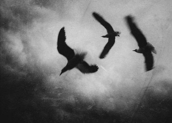 Trois blessures noires – Victor Varjac