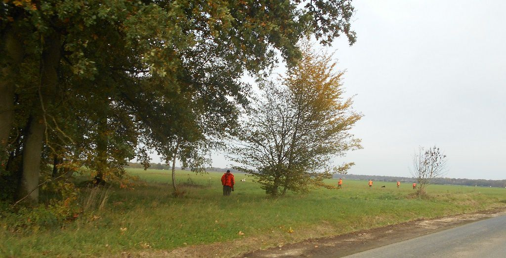Les belles couleurs de l'automne........