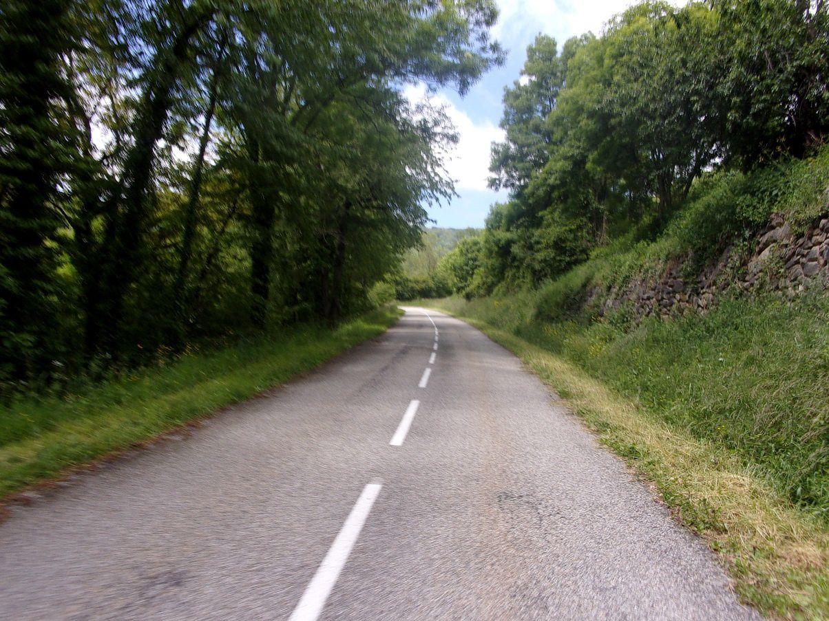 Reconnaissance partielle de l'Ariègeoise