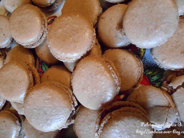 Macarons et truffes Choco-Marron