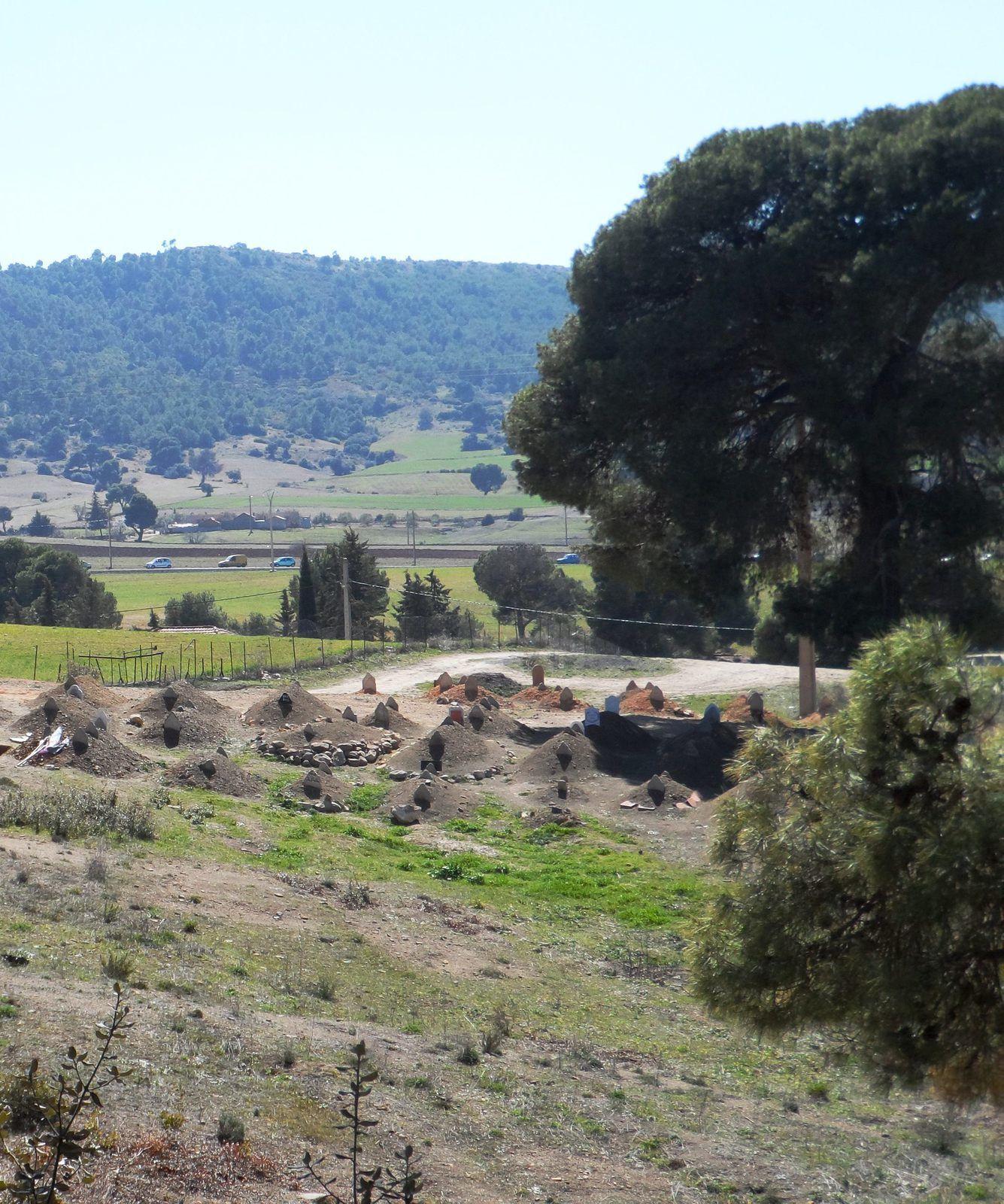 Vue partielle du cimetière de Sidi Hamdoulounis,Hameau de Sdara ,El Hachimia .le 12-03-2015
