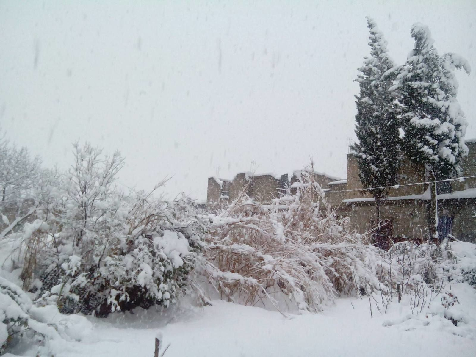 jolie neige. toutes ces images sont de notre amie Evelyne-Tingaud-Goutelard. native de cette belle ville, via un ami Algérien de Gambetta