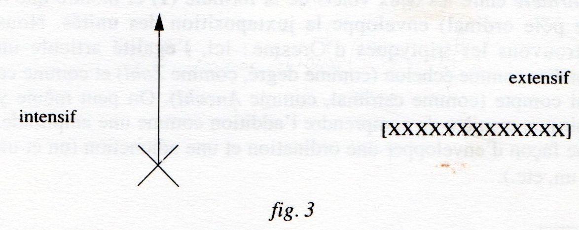 La perspective a-t-elle sa place en physique ? (9/10)