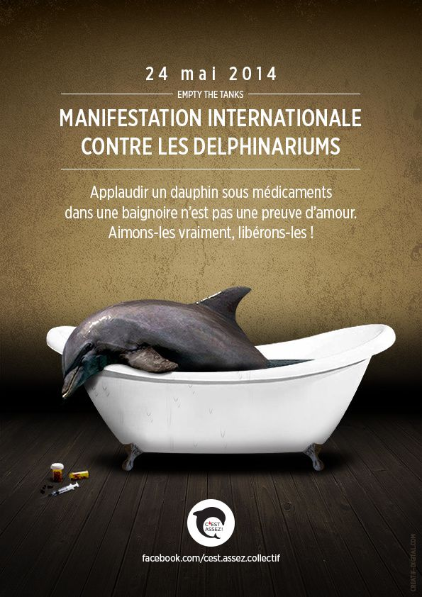 Manifestation Internationale contre les Delphinariums