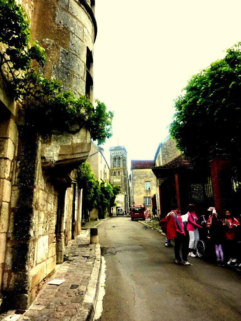La montée de la Grand'Rue jusqu'à la Basilique Sainte-Madeleine, puis la redescente, notre chienne Canaille flirtant avec un sanglier et un autre chien, le resto Le Bougainville et le Musée Zervos