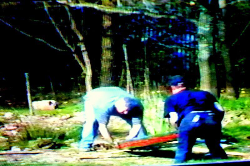 Bio 271 - Avril 2002- Installation des nouveaux totems