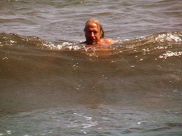La Plage de Fabregas-Sanary(VAR)Un Vancau à la Mer