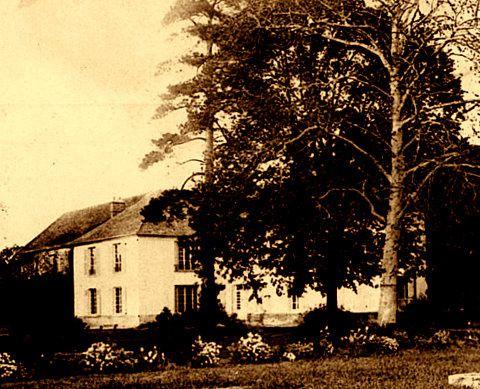 In fine, Bois-Briard, en 1946, dans l'Essonne, propriété Antoine Dehaselle