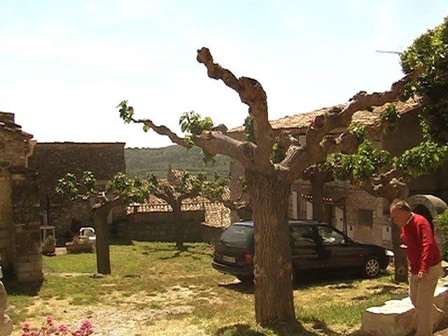 VENASQUE, ses Fontaines et son Baptistère (Monts du Vaucluse) et Murs près de Sénanque