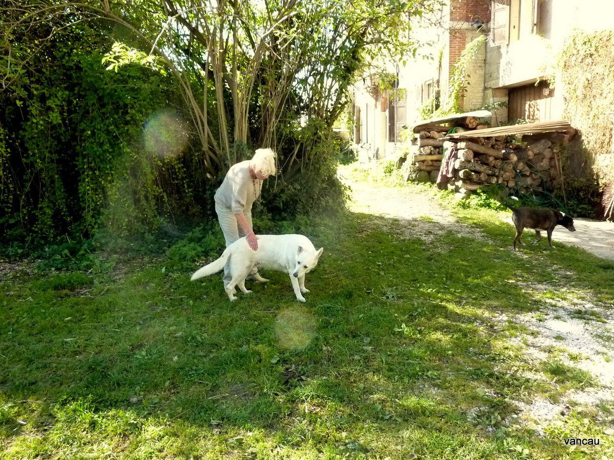 Françoise Lefèvre soignant et nourrissant son cheval Doncel, enfin le cheval d'Hermine