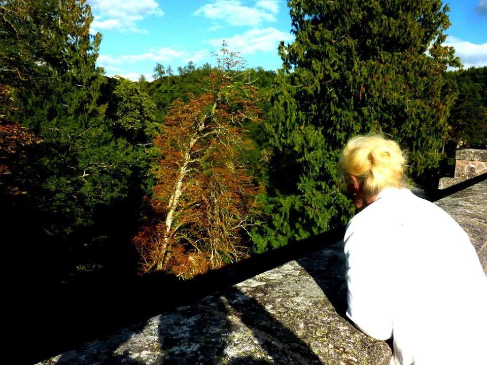 Bio 333 Année 2014 Deuxième semestre- Un nouveau voyage en Bourgogne