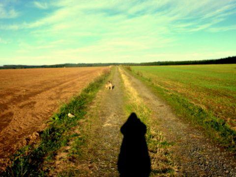 Les Champs d'en Haut et NOKERE en Flandre