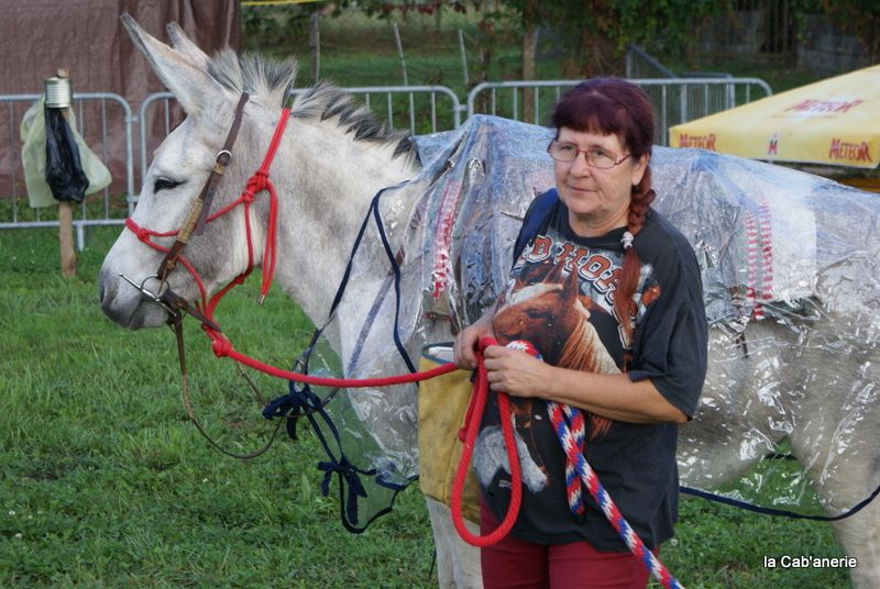 6ème fête de l'âne à Belley