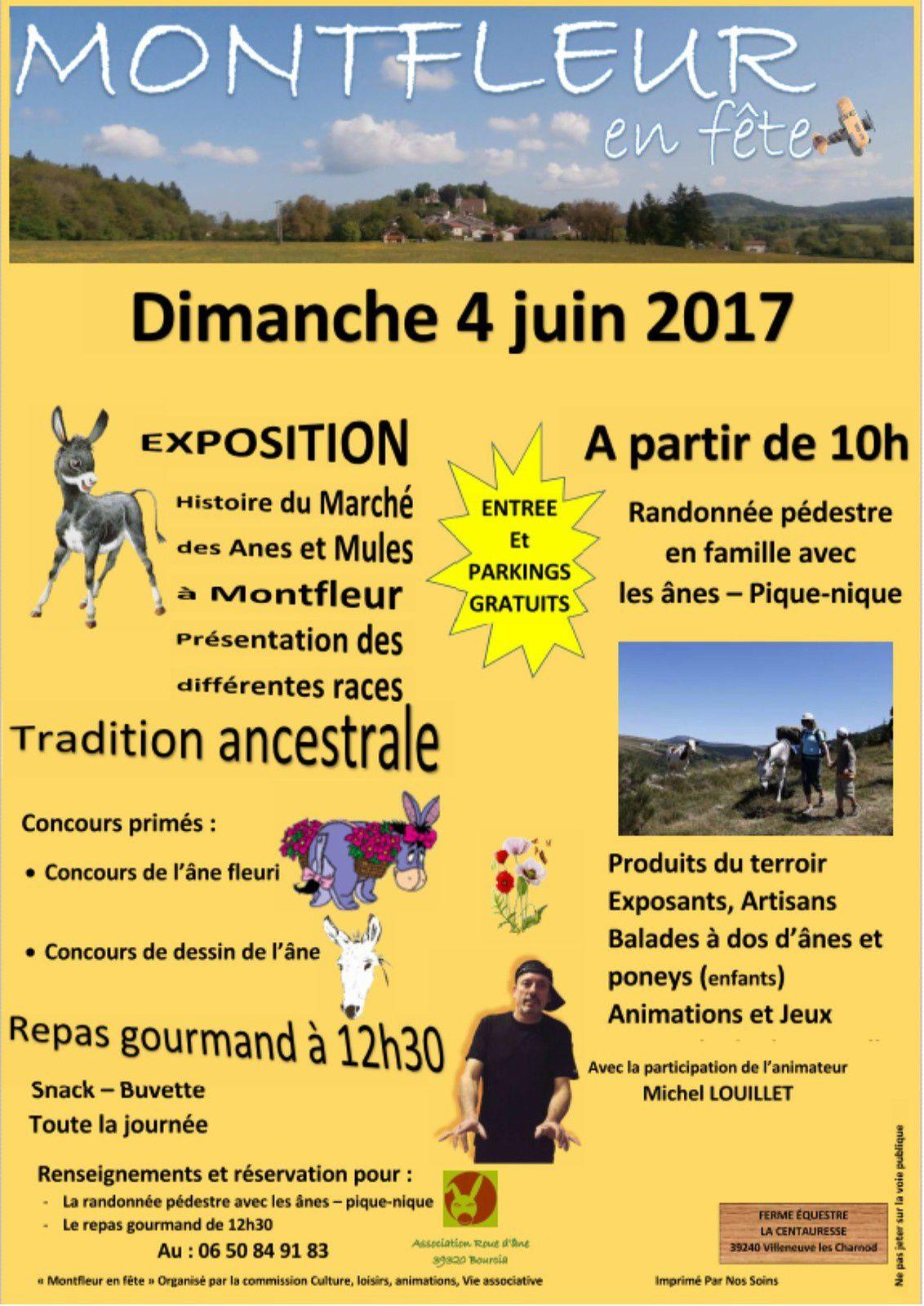 Fête de l'âne dans le Jura