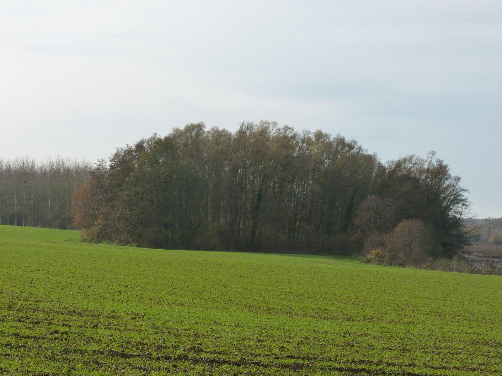 Photos prises sur la commune de Golancourt (60) Oise