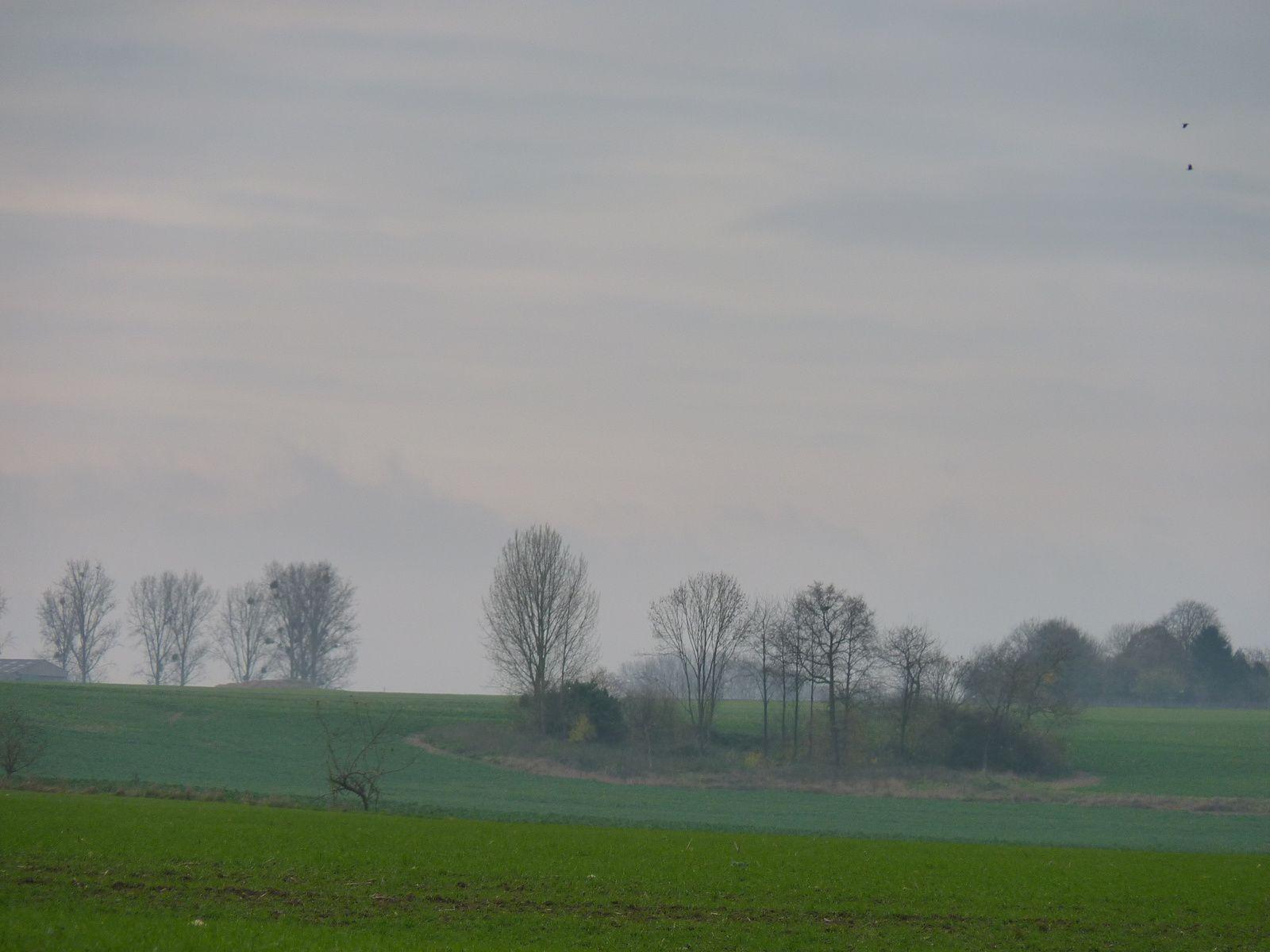 Photos prises sur la commune de Golancourt '60) Oise